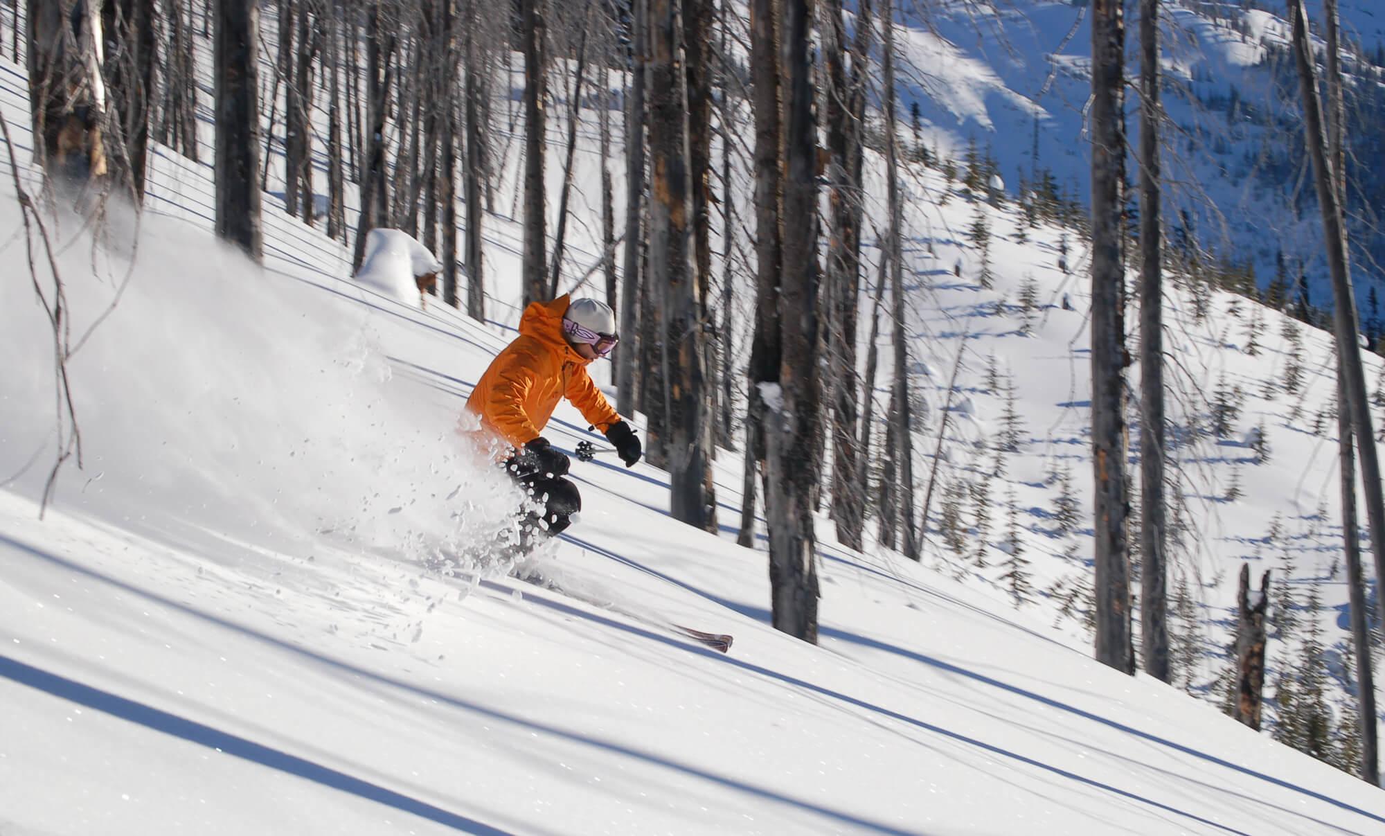 Tree powder skier